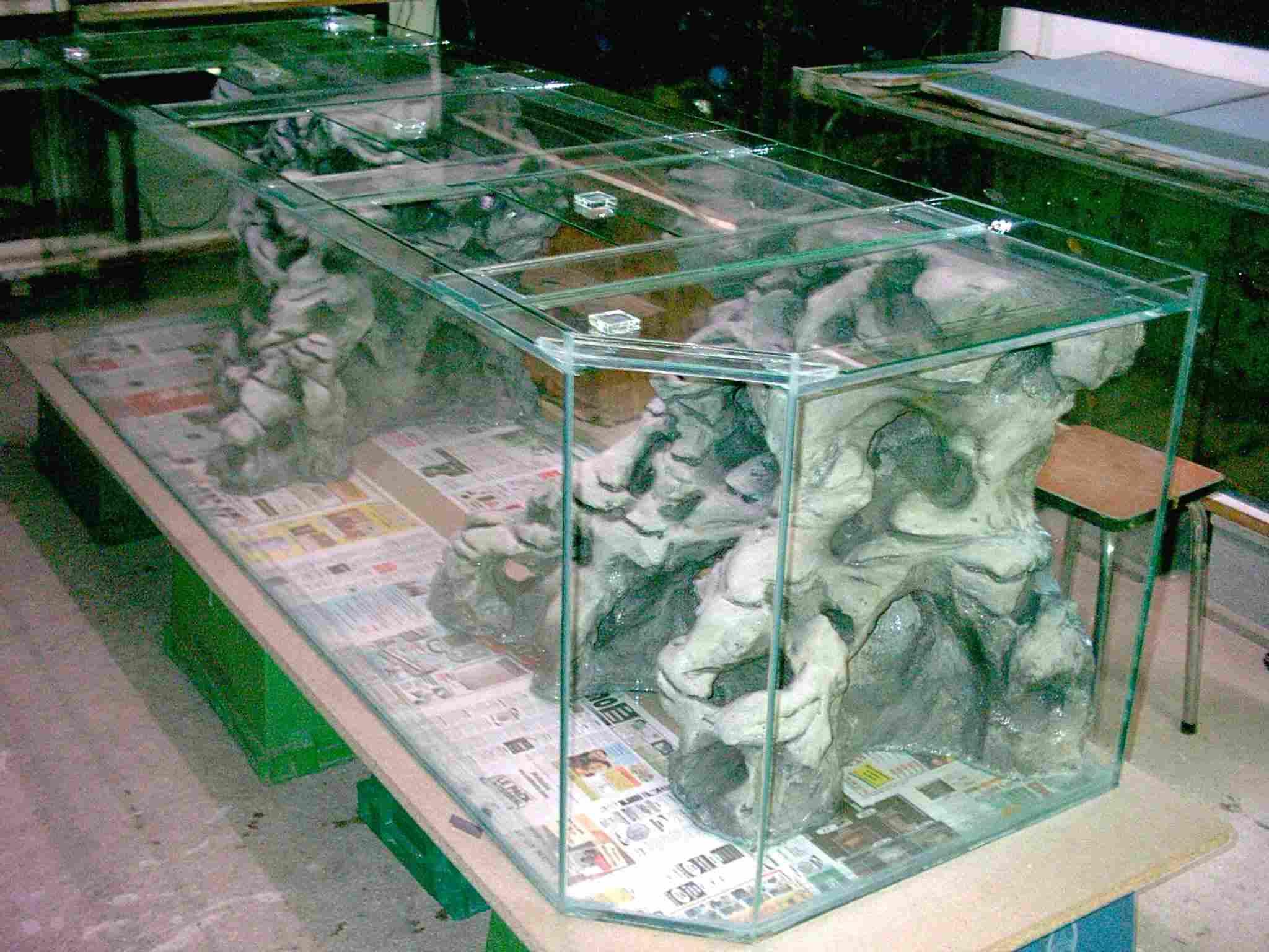 Aquaplum 39 coraux fabrication d 39 aquariums for Aquarium eau douce