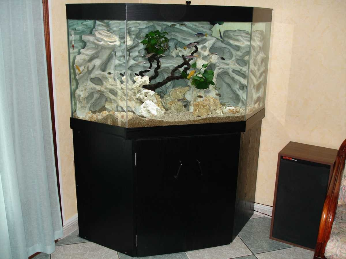fabriquer un meuble d aquarium en bois. Black Bedroom Furniture Sets. Home Design Ideas