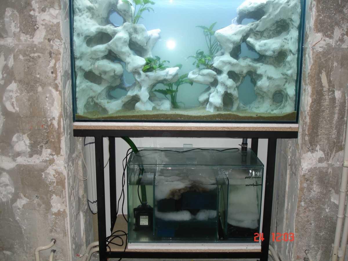 aquaplum coraux fabrication d aquariums